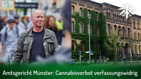 Amtsgericht Münster: Cannabisverbot verfassungswidrig | DHV-Audio-News #300