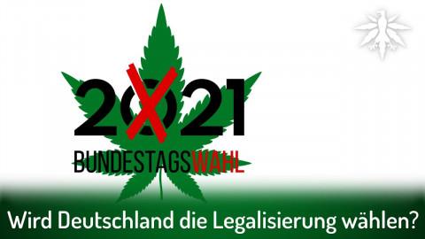 Showdown: Wird Deutschland die Legalisierung wählen? | DHV-Audio-News #308 (Korrektur)